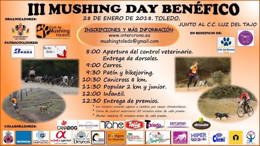 CARTEL III MUSHING DAY